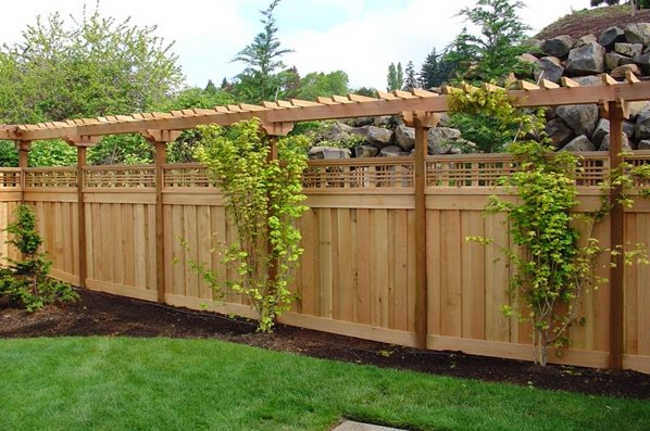 Backyard Fencing Ideas - Landscaping Netwo