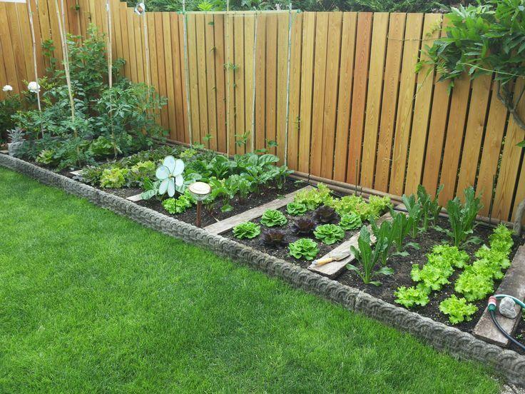 Obstgärten Obstgärten #obstgarten #obstgrtenObstgärten Obstgärten .