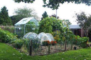Backyard Vegetable Garden Layout | The Old Farmer's Alman
