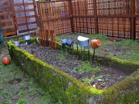 5 Super Simple Ways to Get Your Urban Garden Going   TreeHugg