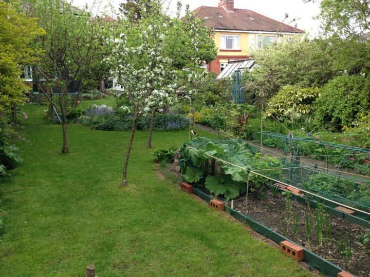 Backyard Vegetable Garden Layout   The Old Farmer's Alman
