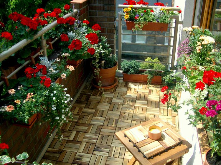 18 Balcony Gardening Tips to Follow before Setting up a Balcony .