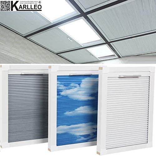 Amazon.com: Manual/Motorized Skylight Roof Window Cellular .