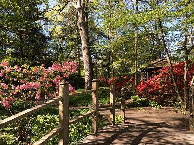 Toledo Botanical Garden | Lucas County, OH - Official Websi