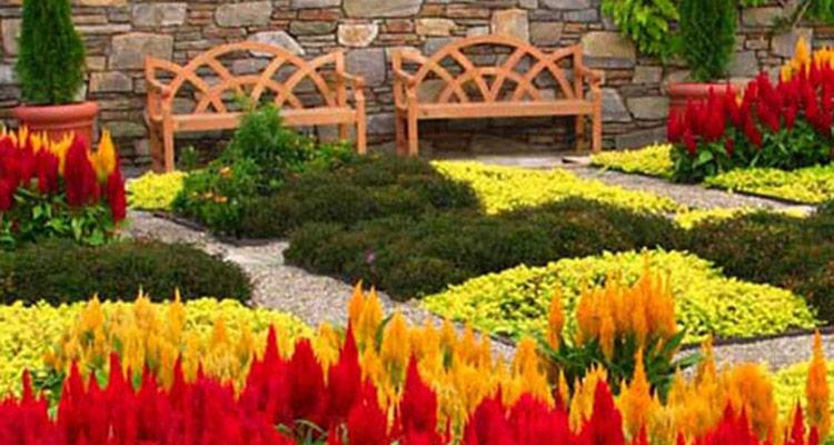 Asheville Botanical Gardens | Asheville Cabins of Willow Win