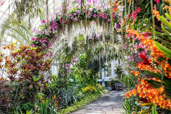 New York Botanical Garden Orchid Show Inspired by Singapo