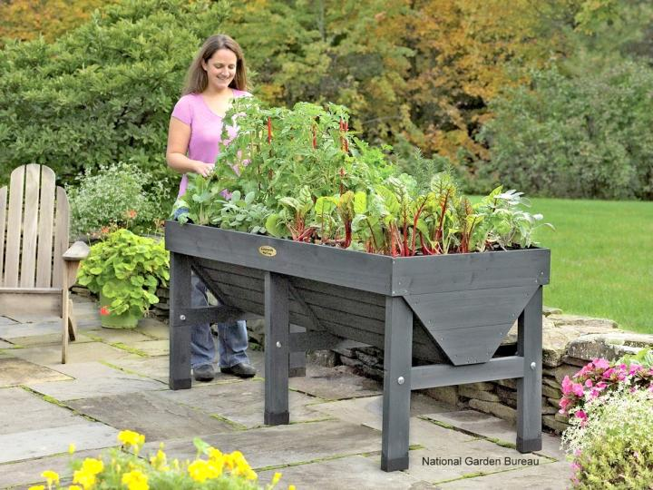 Container Gardening with Vegetables: Getting Started | The Old .