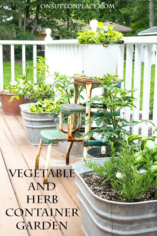 Easy Container Gardening: Herbs & Vegetables - On Sutton Pla