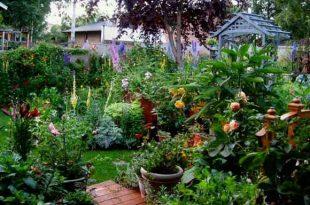 english cottage garden design ideas Small Cottage Garden Design .