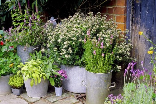 11 ideas for simple cottage gardens | Cottage Li