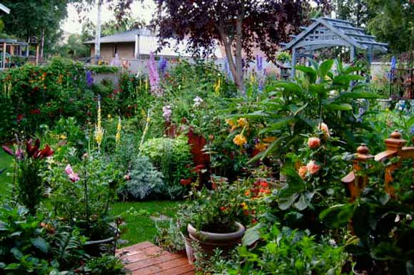 Cottage Garden Design Ide