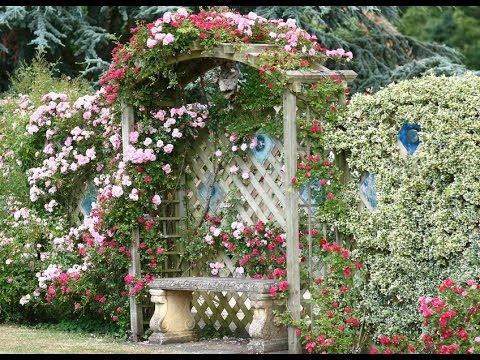 Cottage Garden Designs I Cottage Garden Designs Ideas - YouTu