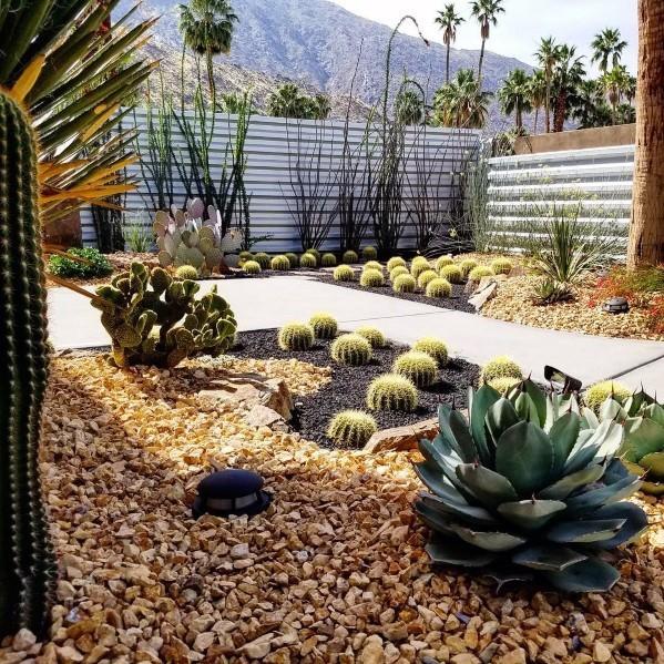 Top 70 Best Desert Landscaping Ideas - Drought Tolerant Plan