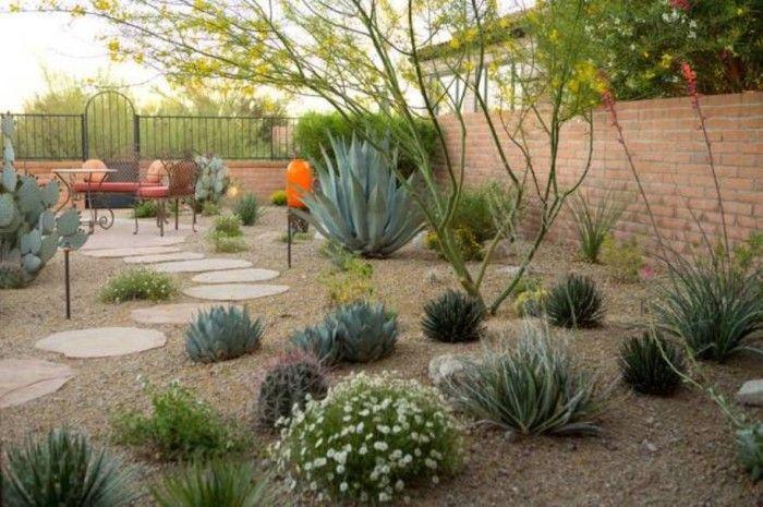 Backyard Desert Landscaping , Desert Landscaping For Your Yard In .