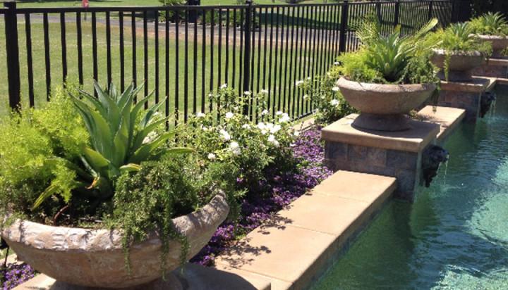 Desert Landscaping Alternatives - Hanson Remodels & Landscap
