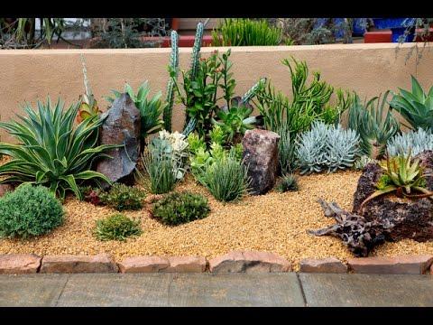 50 Backyard Desert Landscaping Ideas - YouTu