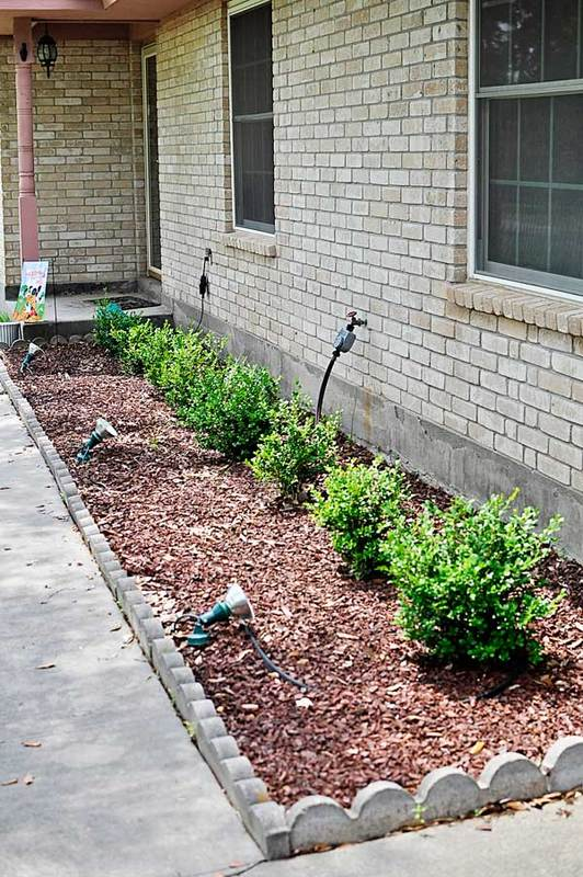 DIY Landscaping for Newbies - Monica Wants