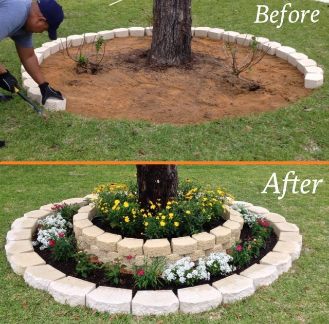 Landscaping around a tree | Backyard landscaping, Front yard .