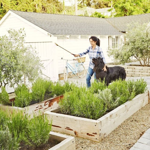 85 Best Backyard Ideas - Easy DIY Backyard Design Ti