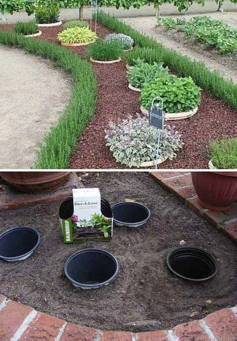 Simple, easy and cheap DIY garden landscaping idea... | Front yard .