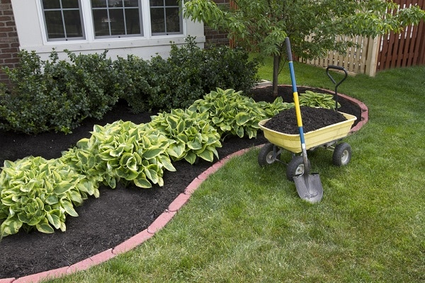 Home Tips: Low-Maintenance Landscaping - North Eastern Group Real