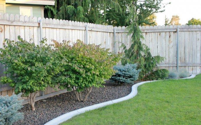 Easy Landscaping IDEAS for Beginners | Landscape Ide