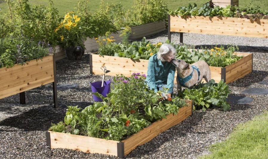 Guide to Raised Garden Beds: Plans, Timing, Tending | Gardener's .