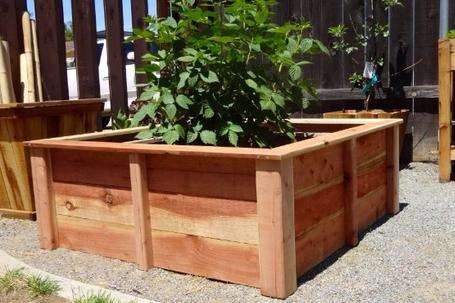Redwood- Style 3-Custom Raised Gardens - Raised Garden Bed Design .