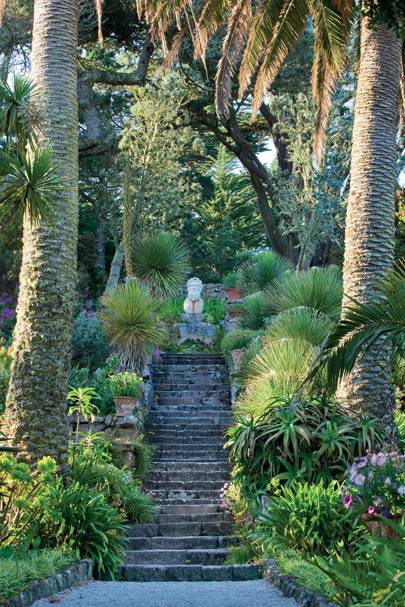 English Gardens: From the Archives of Country Life Magazine – Book .