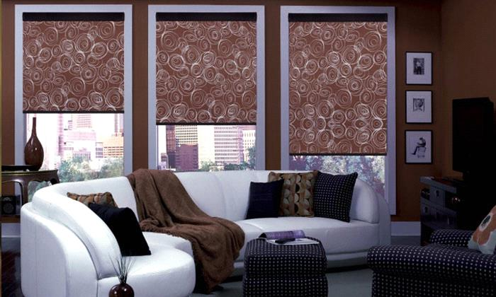 Steve's Exclusive Collection - Roller and Solar Shades - Best .