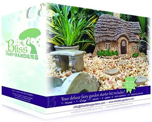 Amazon.com: Bliss Fairy Gardens Magical Starter Kit for Her .