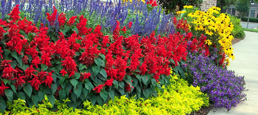 Flower Bed Garden Design Ideas and Tips from the Experts at Wilson .