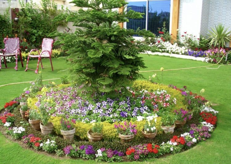 18 Flower Bed Ideas to Try for Small Budget - MORFLO