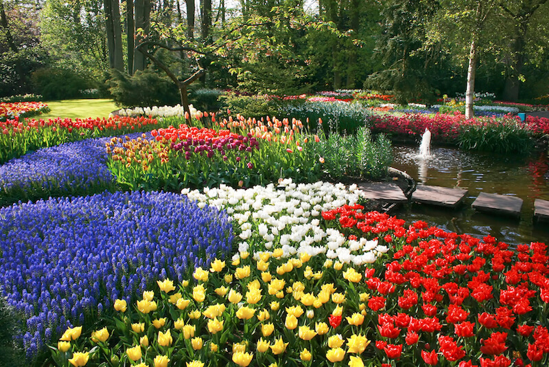 25 Magical Flower Bed Ideas and Desig