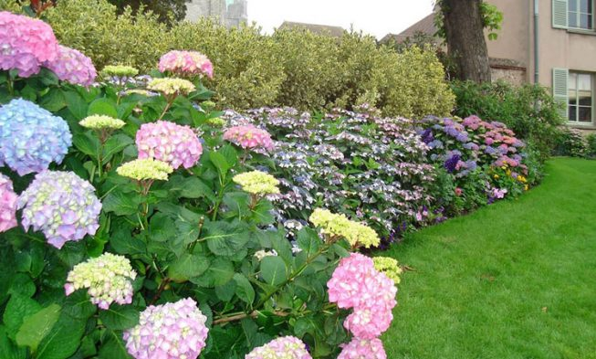 √ 35 Unique and Beautiful Flower Bed Ideas for the Front Yard .