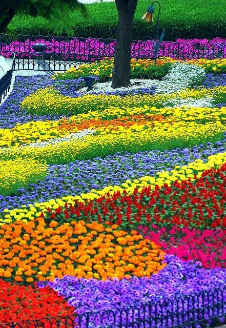Eveland Flower garden | Beautiful gardens, Flower garden design .