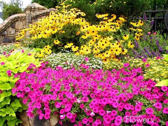 10 Small Flower Garden Ideas to Build a Serene Backyard Retreat .