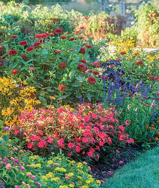 How to Grow a Flower Garden - Flower Gardening Tips & Advice - Burp
