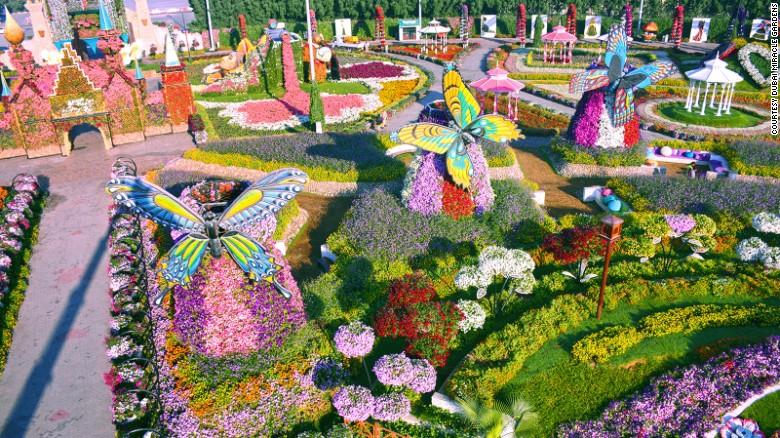 Dubai Miracle Garden: World's largest flower garden   CNN Trav