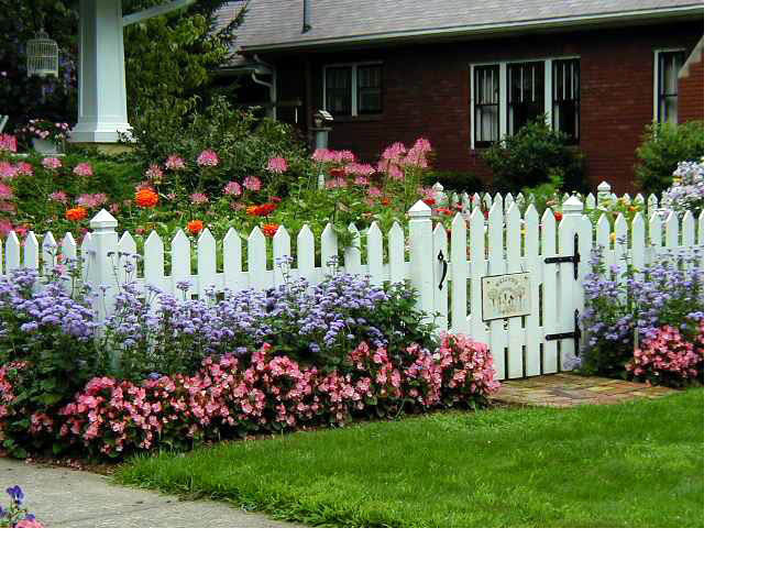 Explore Cornell - Home Gardening - Using Color in Flower Garde