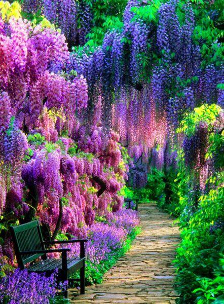World Famous Flower Gardens: 14 Breathtaking Photos   Beautiful .