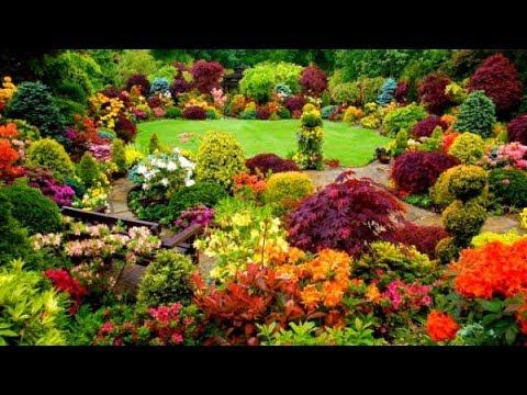 Beautiful flower gardens ideas - Beautiful House - YouTu
