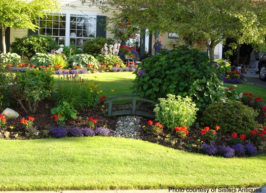 Front Yard Landscaping | Privacy landscaping, Backyard landscaping .