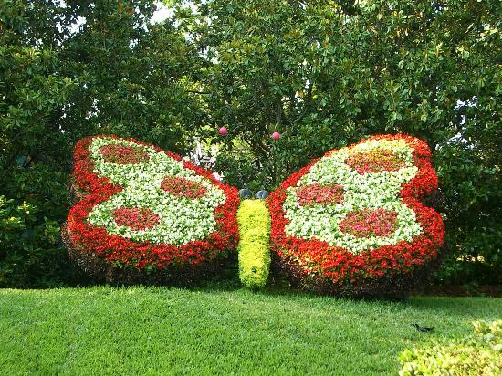 About Garden Art - Lessons - Tes Tea