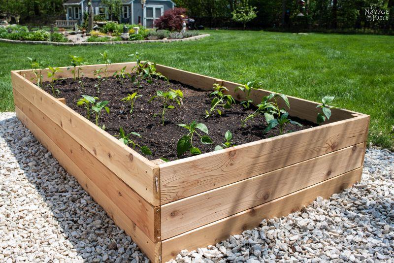 DIY Raised Garden Beds Tutorial - The Navage Pat