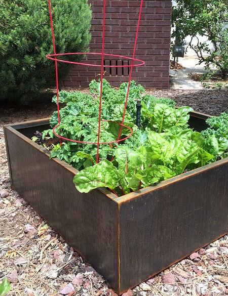 Corten Steel Raised Garden Beds by Nice Planter | Gardener's Supp
