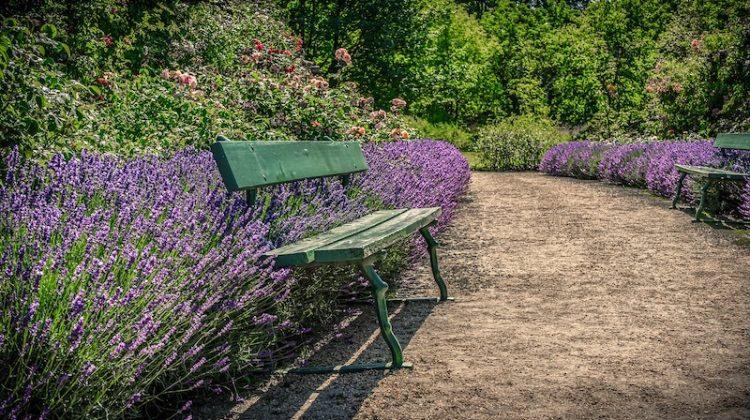 27 Charming Outdoor Garden Benches Perfect For Your Summer Gard
