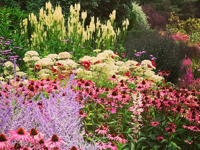 Expert Tips On How To Achieve Summer Garden Borders – Best .