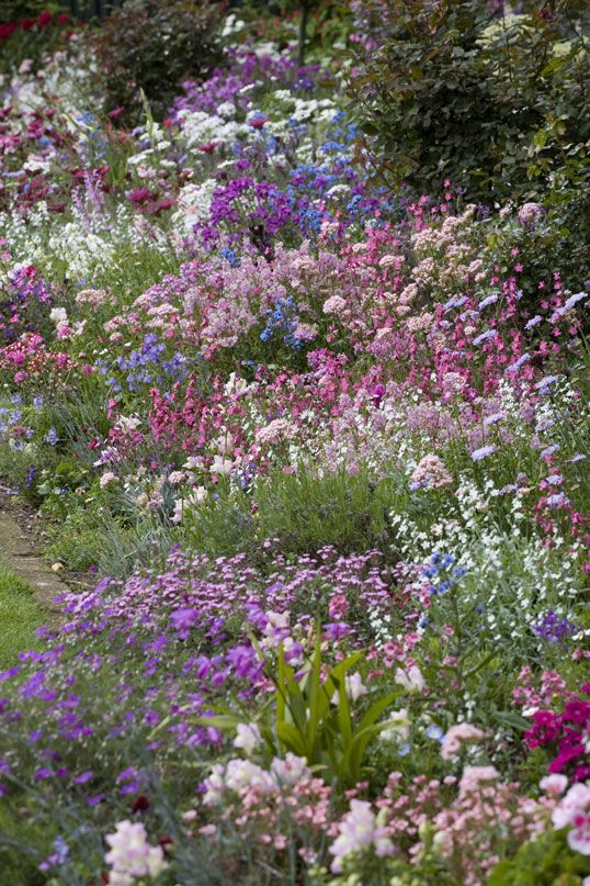 english cottage garden borders - This is what I'm trying to .