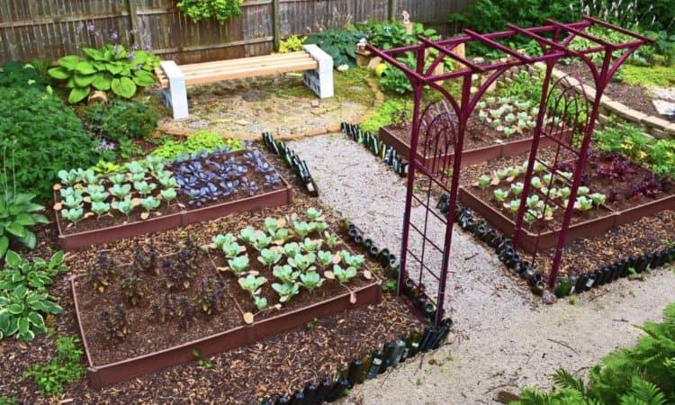 Best 20 Vegetable Garden Design Ideas for Green Living - MORFLO
